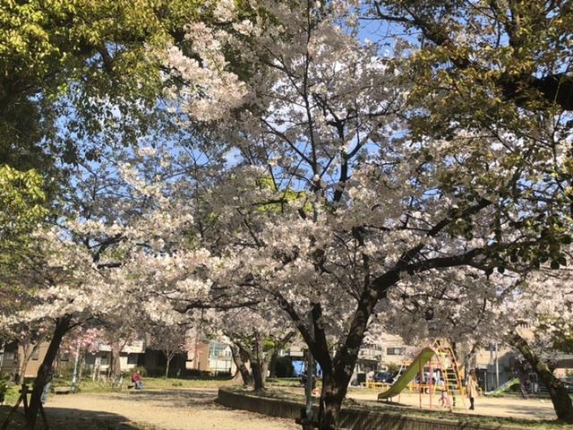 桜ノ宮東公園